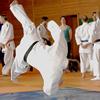 35. Tokio-Hirano-Gedenk–Lehrgang am 2. und 3. Mai 2015