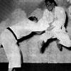 Sprung Tai-Otoshi